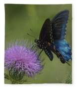 Pipevine Swallowtail Visiting Field Thistle Din158 Fleece Blanket