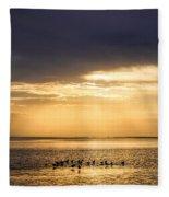 Pirates Gold Fleece Blanket