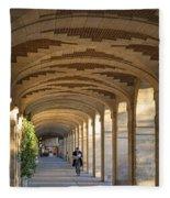 Place Des Vosges Walkway Fleece Blanket