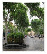 Plane Alley - Aix En Provence Fleece Blanket