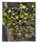 Plant Mutation Fleece Blanket
