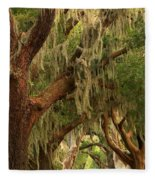Plantation Oak Trees Fleece Blanket