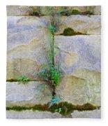 Plants In The Brick Wall Fleece Blanket