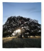 Plateau Oak Tree Fleece Blanket