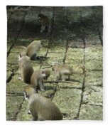 Green Monkey Play Time Fleece Blanket