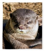 Play Time For Otters Fleece Blanket