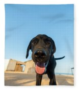 Playful Dog Closeup Fleece Blanket