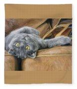 Playful Fleece Blanket