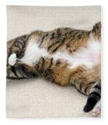 Please Rub My Tummy Fleece Blanket