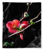 Plum Blossom 3 Fleece Blanket