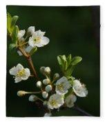Plum Blossoms Fleece Blanket