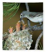 Plumbeous Vireo Feeding Worm To Chicks Fleece Blanket