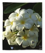 Plumeria Fleece Blanket