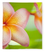 Plumeria Pastels Fleece Blanket