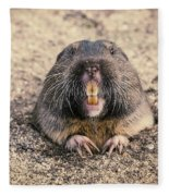 Pocket Gopher Chatting Fleece Blanket