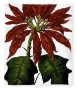 Poinsettia A Traditional Christmas Plant Vintage Poster Fleece Blanket