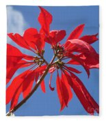poinsettia from Madagascar Fleece Blanket