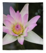 Pointed Pink Lily Fleece Blanket