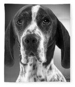 Pointer Dog Fleece Blanket