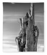 Pointing To The Heavens - Bw Fleece Blanket
