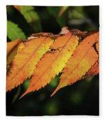 Poison Sumac Golden Kickoff To Fall Colors Fleece Blanket