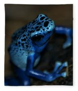 Poisonous Blue Frog 02 Fleece Blanket
