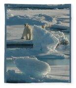 Polar Bear And Cub Fleece Blanket