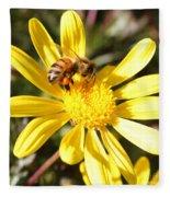Pollen-laden Bee On Yellow Daisy Fleece Blanket