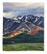 Polychrome Fleece Blanket