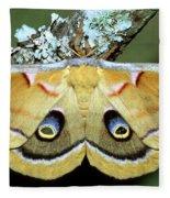 Polyphemus Moth Fleece Blanket