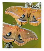 Polyphemus Moths Fleece Blanket
