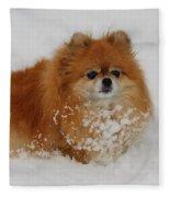 Pomeranian In Snow Fleece Blanket