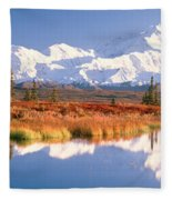 Pond, Alaska Range, Denali National Fleece Blanket
