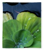 Pond Lettuce Fleece Blanket