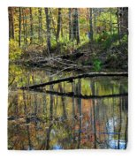 Pond Reflects Fleece Blanket