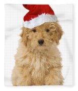 Poodle In Christmas Hat Fleece Blanket