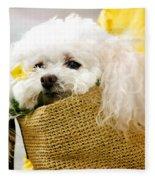 Poodle In Pouch Fleece Blanket