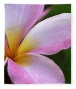 Pop Of Pink Plumeria Fleece Blanket