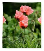 Poppies In My Garden Fleece Blanket