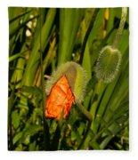 Poppy Emergence Fleece Blanket