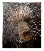 Porcupine Fleece Blanket