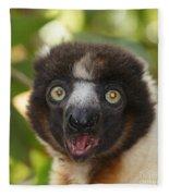 portrait of a sifaka from Madagascar Fleece Blanket