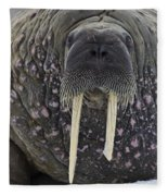 Portrait Of A Walrus Fleece Blanket