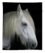 Portrait Of A White Horse Fleece Blanket