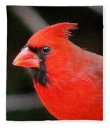 Portrait Of Male Cardinal Fleece Blanket
