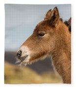 Portrait Of Newborn Foal Fleece Blanket