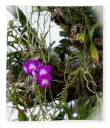 Portrait Of Orchids Fleece Blanket