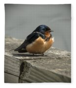 Posing Barn Swallow Fleece Blanket