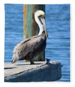 Posing Pelican Fleece Blanket
