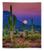 Postcard Perfect Arizona Fleece Blanket